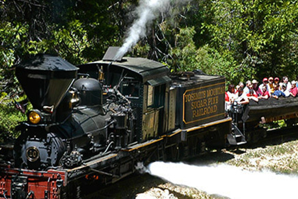 Sugar Pine Railroad | Yosemite,CA | Apple Blossom