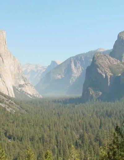 Yosemite Valley   Yosemite,CA   Apple Blossom