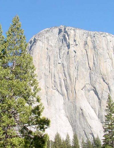 Yosemite's El Capitan   Yosemite,CA   Apple Blossom