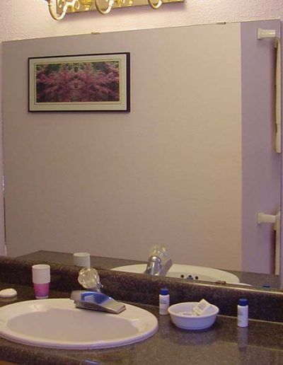 bathrooms   Yosemite,CA   Apple Blossom
